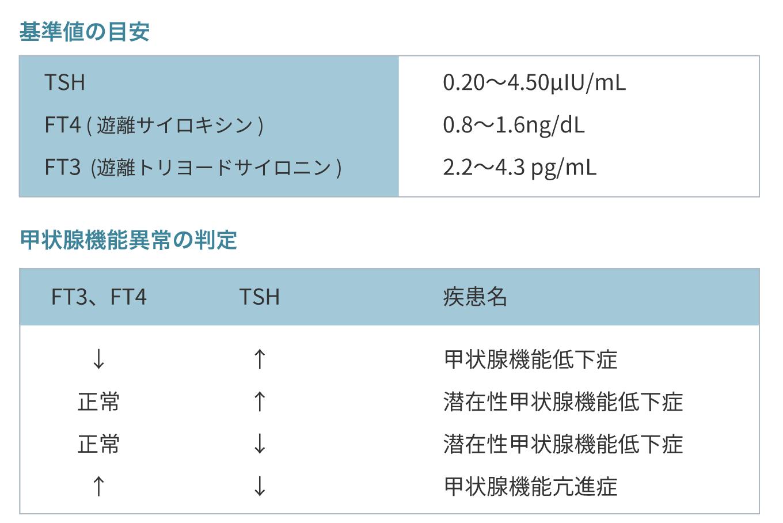甲状腺機能検査